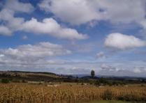 Whoville Kenya